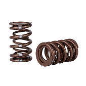 Skunk2 K-Series i-VTEC Pro Series XP Valve Springs - RSX Base / Type-S