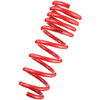 Tanabe NF210 Lowering Springs - RSX Base 02-04
