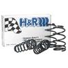 H&R Sport Spring Lowering Springs - Acura RSX 02-04