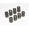 Skunk2 Tuner Series Valve Spring Set (Dual Springs) - RSX Base 02-06