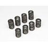 Skunk2 Tuner Series Valve Spring Set (Dual Springs) - RSX Base 02-06