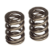 Skunk2 Pro Valve Spring Set - K20A - K24A Engines